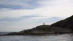 Carlton-Visitors-on-board-'The-Ocean-Ranger'-012